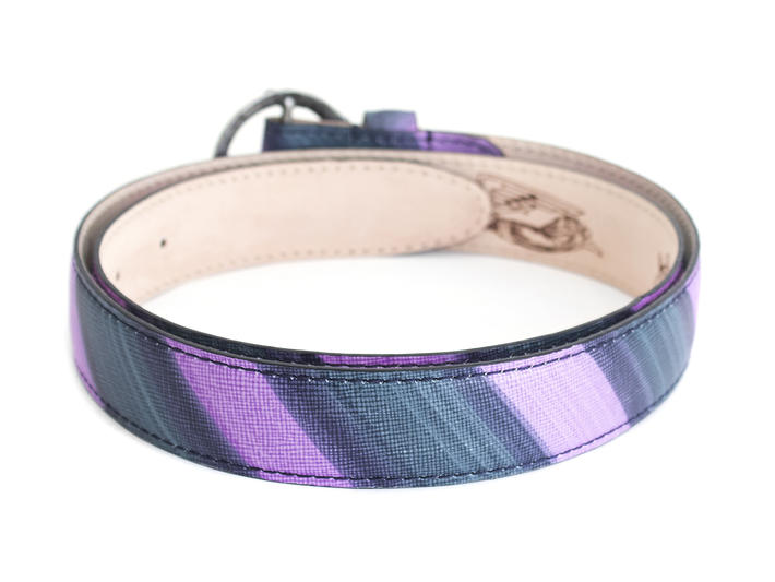 Artemisia Purple Striped Patterned hip belt