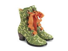 Gladstone Vert/Oiseaux Botte mi-mollet à lacets
