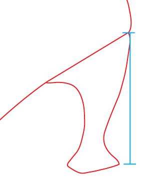 heel_dimensions