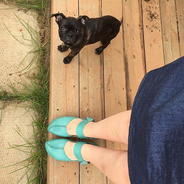 Just below the irresistable puppy whose eyes are locked with yours is the turquoise GUIDE as modeled by @lisaleejack. Look fo…
