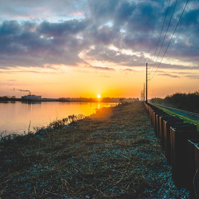 """""""There's a little known bayou within the city limits of New Orleans I paid a visit to for @StreetVogs. Take a morning jaunt t…"""